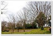 20090322奈良:飛鳥之高松塚古墳:DSC_1213_resize.jpg