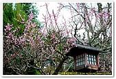 20090322奈良:竹林寺、中千本公園:DSC_1114_resize.jpg