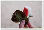 20090322奈良:竹林寺、中千本公園:DSC_1118_resize.jpg