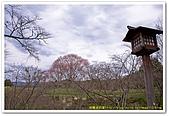 20090322奈良:竹林寺、中千本公園:DSC_1139_resize.jpg