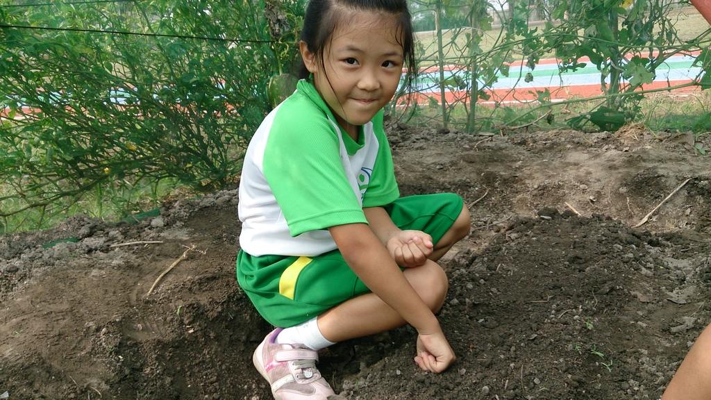 104一甲-有機菜園種黃豆:DSC_0012.JPG