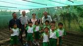 104一甲-有機菜園種黃豆:DSC_0032.JPG