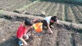 104一甲-有機菜園種黃豆:DSC_0070.JPG