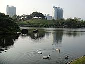 100.4.2羅東運動公園:1羅東運動公園 (46).JPG