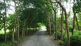 105.5.4新竹17公里海岸自行車道:17公里海岸自行車道 (6).jpg