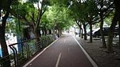 104.6.6后豐自行車道:TEMP020.jpg