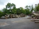 101.6.2羅東森林文化園區:羅東森林文化園區 (2) - 複製.jpg