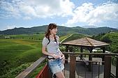 20090821~23 花蓮,台東之旅 Day2:DSC_0271.jpg