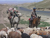 2005 06 北疆 - 動物篇:DSCN1344.JPG