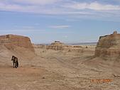 2005 06 北疆 - 動物篇:DSCN0652.JPG