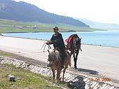 2005 06 北疆 - 動物篇:DSCN1366.JPG