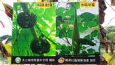103/6/7竹南啤酒廠之旅:xj2014_06_07_12_40_06.jpg