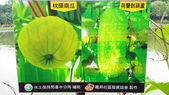 103/6/7竹南啤酒廠之旅:xj2014_06_07_12_41_15.jpg