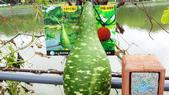 103/6/7竹南啤酒廠之旅:xj2014_06_07_12_42_39.jpg