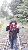 103/6/12阿里山夜未眠:C360_2014-06-13-05-40-09-426.jpg