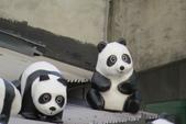紙貓熊在信義公民會館快閃:IMG_2658.JPG