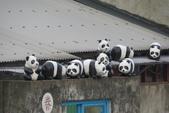 紙貓熊在信義公民會館快閃:IMG_2678.JPG