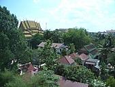 吳哥窟的樹:24.jpg