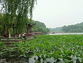 杭州:西湖 009.jpg