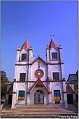 開花的樹:海星天主教幼稚園
