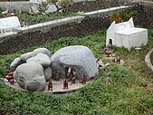 20090127春節小人國之旅:P1010451.JPG