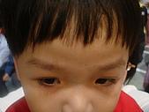 舞台劇及主題館篇:京華城童星球糖果森林歷險記 021.jpg