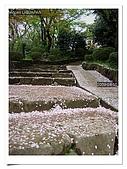 2009_04_15日本北陸行第一天:nEO_IMG_IMG_1124.jpg
