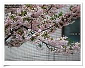2009_04_15日本北陸行第一天:nEO_IMG_IMG_1119.jpg