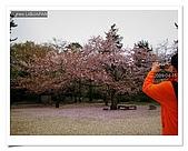 2009_04_15日本北陸行第一天:nEO_IMG_IMG_1133.jpg
