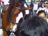 牛年春節紀念照:1653912951.jpg