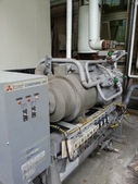 IQF急速冷凍設備:IQF急速冷凍設備