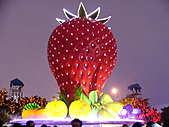 2011台灣燈會:P1090032.JPG
