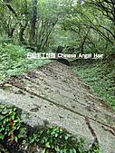 石碇傳統手工麵線相片集,讓您認識手工麵線,認識傳統手工:石碇皇帝殿-往東峰-石梯.JPG