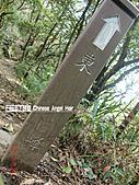 石碇傳統手工麵線相片集,讓您認識手工麵線,認識傳統手工:石碇皇帝殿-往東峰 (18).JPG