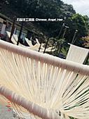 石碇傳統手工麵線相片集,讓您認識手工麵線,認識傳統手工:2010-4-2-曬手工麵線 (8).JPG