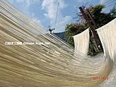 石碇傳統手工麵線相片集,讓您認識手工麵線,認識傳統手工:2010-4-2-曬手工麵線 (2).JPG