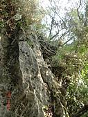 石碇傳統手工麵線相片集,讓您認識手工麵線,認識傳統手工:石碇皇帝殿-往東峰看樣子越來越堅難.JPG