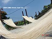 石碇傳統手工麵線相片集,讓您認識手工麵線,認識傳統手工:2010-4-2-曬手工麵線 (3).JPG