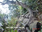 石碇傳統手工麵線相片集,讓您認識手工麵線,認識傳統手工:石碇皇帝殿-往東峰 (21).JPG