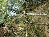 石碇傳統手工麵線相片集,讓您認識手工麵線,認識傳統手工:石碇皇帝殿-往東峰無止盡的堅難路.JPG