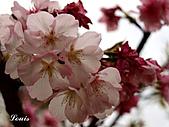 中正紀念堂:P3082378.jpg