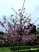 中正紀念堂:P3082387.jpg