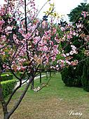 中正紀念堂:P3082389.JPG