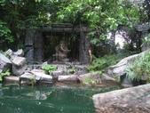 2010-06-11~13香港迪士尼:照片 033