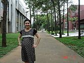 大肚媽媽:九個月大肚媽媽 2008-7-13 下午 02-49-12.JPG