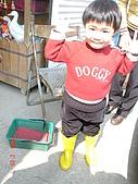 2Y9M的邦子:大湖採草莓 2008-2-28 下午 01-50-02.jpg