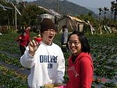 2Y9M的邦子:大湖採草莓 2008-2-28 下午 01-58-40.jpg