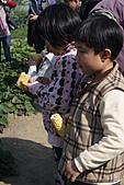 2011台南過新年:亞歷山大蝴蝶生態教育農場-9.JPG