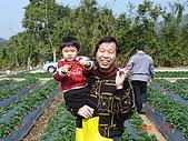 2Y9M的邦子:大湖採草莓 2008-2-28 下午 02-12-38.jpg
