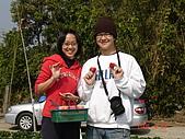 2Y9M的邦子:大湖採草莓 2008-2-28 下午 02-18-50.jpg
